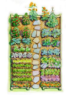 Easy Children's Vegetable Garden Plan Get youngsters excited about growing their own food with this easy-growing garden filled with colorful varieties.