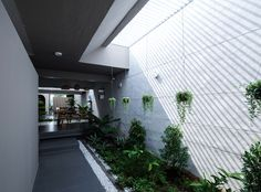Gallery of The Longcave / 23o5 studio - 8