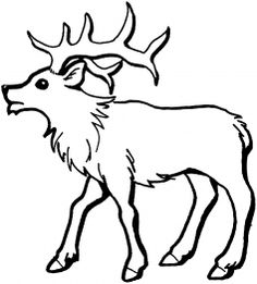 Elk Coloring Page Elk Woodburning and Adult coloring