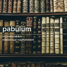 I have too much pabulum. I can't keep up. . . . . . #devonstrang #wordoftheday #wotd #word #words #dictionary #language #definition #pabulum #material #intellectual #nourish #nourishment #book #books #articles #learn #learning