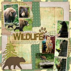 Wildlife digital scrapbooking layout by Cheri Thieleke