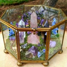 Beautiful Terrarium Ideas What Is A Terrarium? A terrarium is essentially an enclosed environment for growing plants. They are usually made of clear glass or plastic and … Rocks And Gems, Rocks And Minerals, Crystal Magic, Crystal Healing, Crystal Serenity, Crystal Grid, Crystals And Gemstones, Stones And Crystals, Cheap Crystals