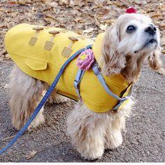 http://www.coccola.co.kr/ 귀엽고 시크한 강아지옷 코콜라 CoCCoLa 입니다.  클래식 울 더플코트 옐로우