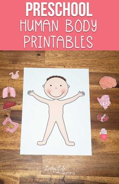 Want to learn about the human body but don't know where to start? Get these preschool human body printables to teach your kids about their bodies. Learn about the different organs and where they belong. Printable Activities For Kids, Preschool Printables, Preschool Worksheets, Kindergarten Science Activities, Preschool Activities, Science Centers, Preschool Body Theme, Chemistry Experiments For Kids, Human Body Activities