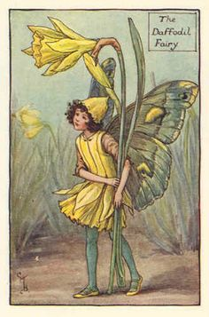 """Vintage print 'The Daffodil Fairy' by Cicely Mary Barker from """"The Book of the Flower Fairies""""; Poem and Pictures by Cicely Mary Barker, Published by Blackie & Son Limited, London [Flower Fairies - Spring] Cicely Mary Barker, Fairy Land, Fairy Tales, Daffodil Flower, Flower Poem, Birth Flower, Fairy Pictures, Vintage Fairies, Vintage Art"""
