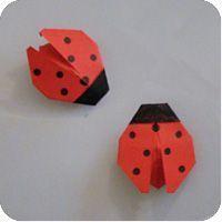 origami coccinella