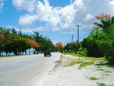 Saipan, CNMI. Beach Road from Panoramio by ide*ha  Flame trees blooming -- when I lived there, there wer no traffic lights anywhere and really, it looked so much like this everywhere.