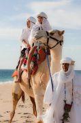 Cabo Desert & Beach Tour   Outback & Camel Safari   Cabo San Lucas