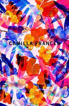 Camila Frances prints