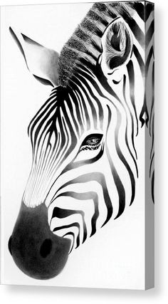 Zebra Face Canvas Print by Vesna Antic. All canvas prints are professionally printed, assembled, and shipped within 3 - 4 business days and delivered ready-to-hang on your wall. Choose from multiple print sizes, border colors, and canvas materials. Zebra Drawing, Zebra Painting, Canvas Art, Canvas Prints, Art Prints, Zebra Face, Afrique Art, African Art Paintings, Face Art