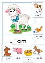 Woordkaarten Lente – A4 met lidwoorden