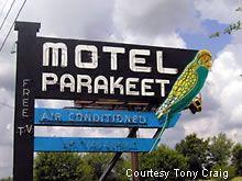 Motel Parakeet neon sign - West Sunshine, Springfield, MO