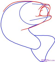 Bass Fish Drawings   ... the frame drawn out you can start sketching out the shape of the bass