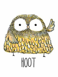 'Hoot' by Lauren Hughes
