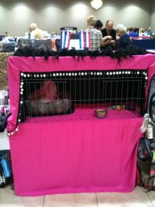Show Cat Cage Curtains - Purrelli Persians & Exotics