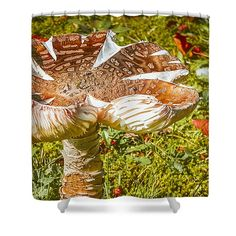 Home #decor Shower Curtain with #green colors featuring the photograph Mushroom Upclose by Judi Saunders.