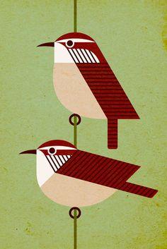 Scott Partridge - Illustration - Niceforo's Wren