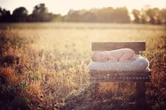 Image of Country Lane Toddler Bench or Newborn Prop Bed