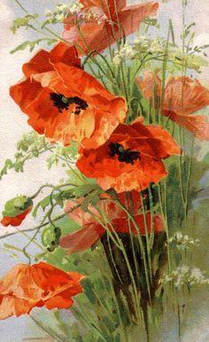 Melly: Catharina Klein - Alte flori