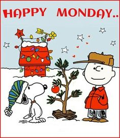 Charlie Brown and Snoopy - Charlie Brown and Snoopy - Weihnachten Christmas Tree Quotes, Christmas Comics, Christmas Bible, Peanuts Christmas, Christmas Humor, Xmas, Christmas Quotes And Sayings, Funny Christmas Cartoons, Christmas Messages
