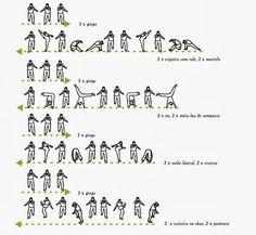 Basic movements of capoeira - 2