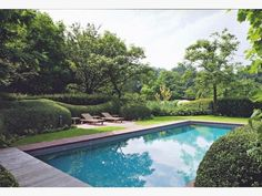 Look how serene this backyard pool area is.. even the water is super still!