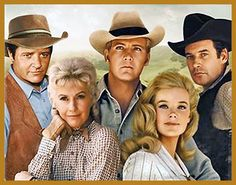 The Big Valley - I used to watch old re-runs of this with my Granddaddy.