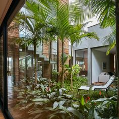 A cluster of cement- and stone-covered volumes conceal a garden of bushy grass, palm trees and colourful plants that architect David Guerra has created at the centre of this house in southeast Brazil.