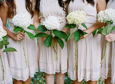 blooms | hydrangea | via: austin gros