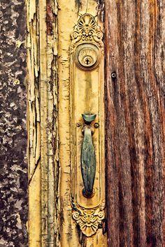 باب الشجرة