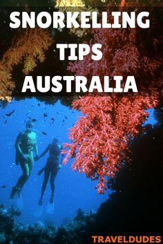 Snorkelling along the Great Barrier Reef in Australia | Travel Blog