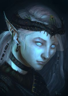 Skyrim Last of the Snow Elves by ~1Rich1 on deviantART