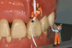 Plaque also can attack fillings and other restorations in your mouth, which can lead to more costly treatment down the road. - See more at: http://www.atooth.com/what-is-tooth-decay/#sthash.6V0d5Ala.dpuf