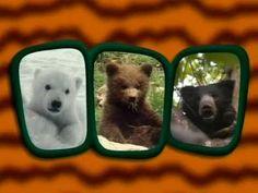 Αρκούδες- Ο μαγικός κόσμος των ζώων Animal Crafts, Activities, Animals, Youtube, Kids, Animales, Animaux, Animal, Animais
