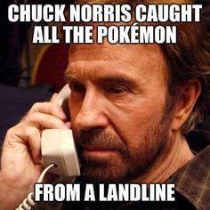 Pokemon Memes – Chuck Norris http://memeblender.com/2016/07/25/pokemon-memes-chuck-norris/