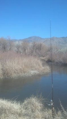 Fishing on the Owens River in Bishop, CA