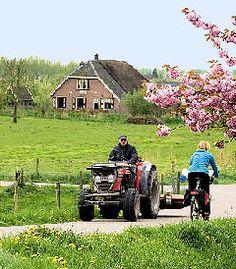 Betuwe, The Netherlands