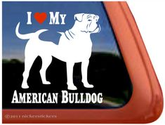 Got Drool Funny American Bulldog Vinyl Window Decal Sticker