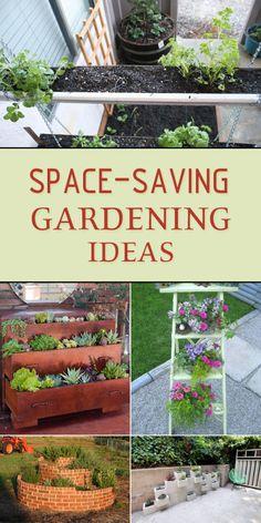 15 Creative Space-Saving Gardening Ideas