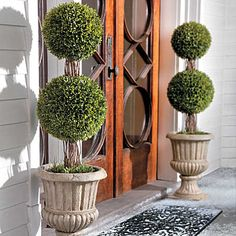 """Want this so bad with white lights for outside the front door for Christmas!36"""" Podocarpus Double Ball Topiary"""