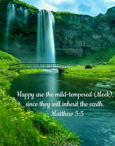 """Happy are the mild-tempered, since they will inherit the earth."" Matthew 5:5"