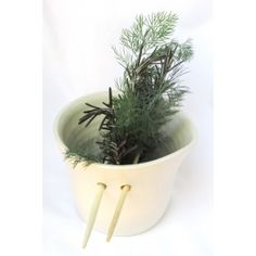 The Fresh Herb Jug is completely functional, and has an ergonomic, simple, modern design which will take pride of place in your kitchen. Herbs are held upright, with a small amount of water in the bottom of the jug to keep them fresh. Fresh Herbs, The Fresh, South Africa, Planter Pots, Easter, African, Plants, Stuff To Buy, Art