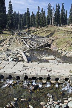 Kashmir Gulmarg