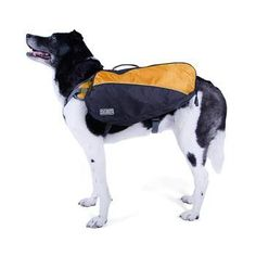Hit the trails and have a good time while your dog can help carry some supplies…