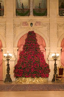 christmas at the newport mansions newport mansions victorian decor victorian christmas christmas inspiration