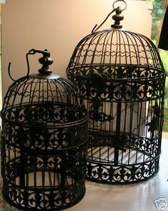 love antique bird cages, find some where and paint to match dining room in new house Antique Bird Cages, Vintage Theme, Vintage Soul, Vintage Decor, Decoration Inspiration, Furniture Inspiration, Beautiful Birds, Bird Houses, Sweet Home