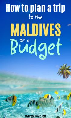 the maldives travel Romantic Travel The maldives travel _ die malediven reisen _ les maldives voyagent _ los maldives Maldives Budget, Maldives Beach, Maldives Resort, Maldives Travel, Maldives Hotels, Maldives Islands, Maldives Honeymoon, Maldives Trip, Travel Money