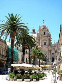 A SUMMER IN ITALY PALERMO.