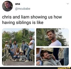 marvel avengers Chris and liam showing us how having siblings is like popular memes on the site Marvel Jokes, Funny Marvel Memes, Dc Memes, Avengers Memes, Marvel Avengers, Thor Jokes, Thor Meme, Avengers Cast, Funny Comics