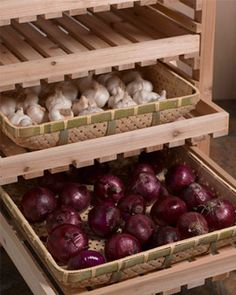 Food Storage trays for root veggies